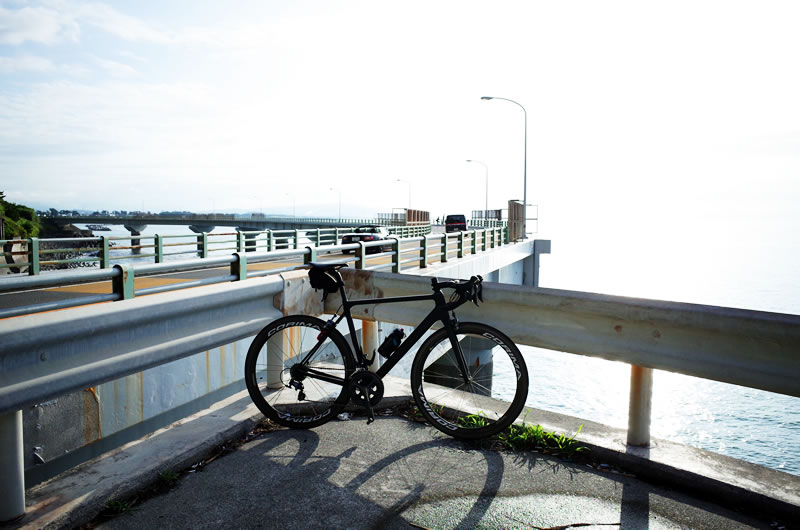 海にせり出したループ橋が特徴の大崩海岸