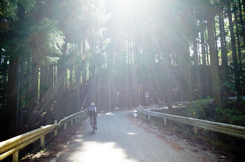 長野に入ると路面状況が良くなる田口峠