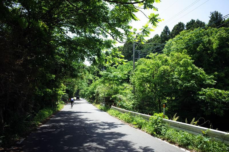 きのこ山への道は序盤からすっごい激坂ww
