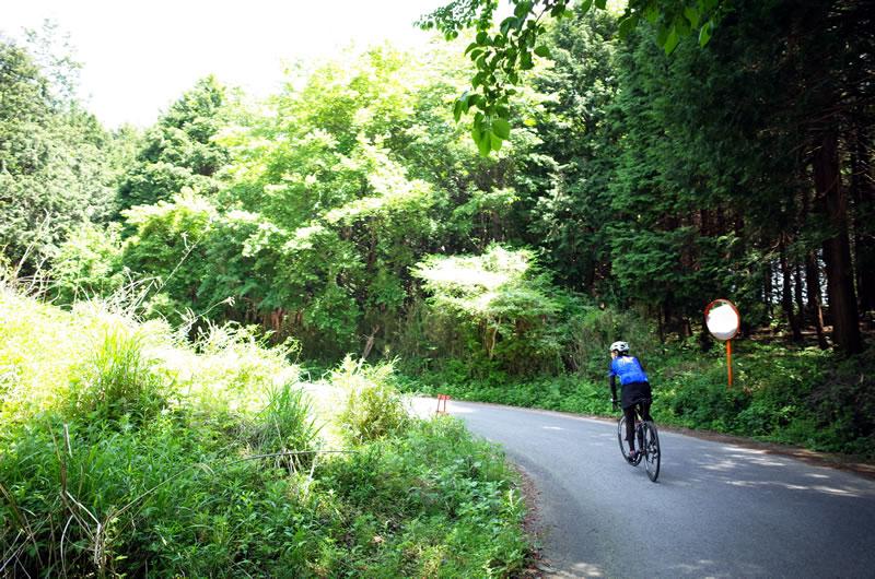 きのこ山への道はまるで和田峠みたい