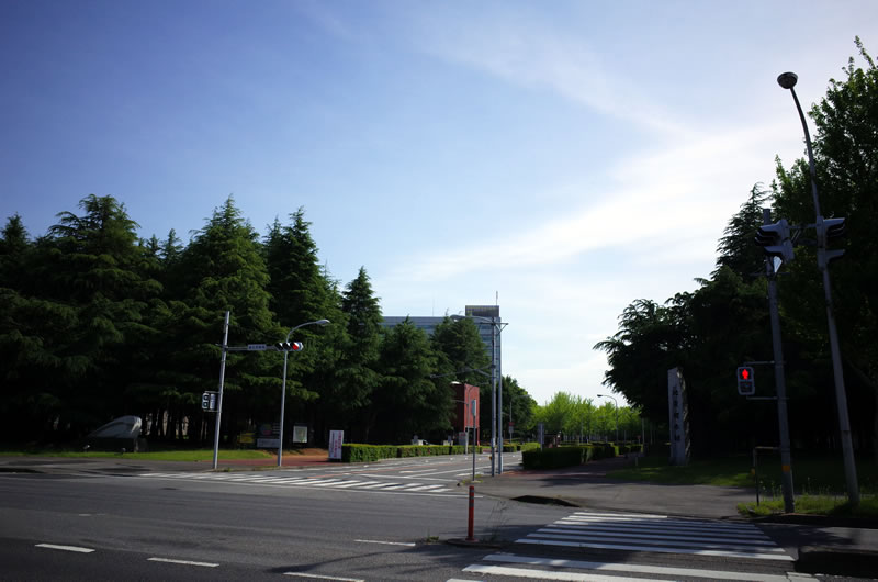 筑波山ライド、もう一つの目的地は地質標本館