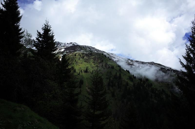 森林限界から絶景天国の予感!