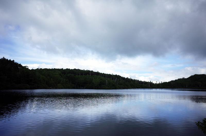 白駒の池はこんな感じ