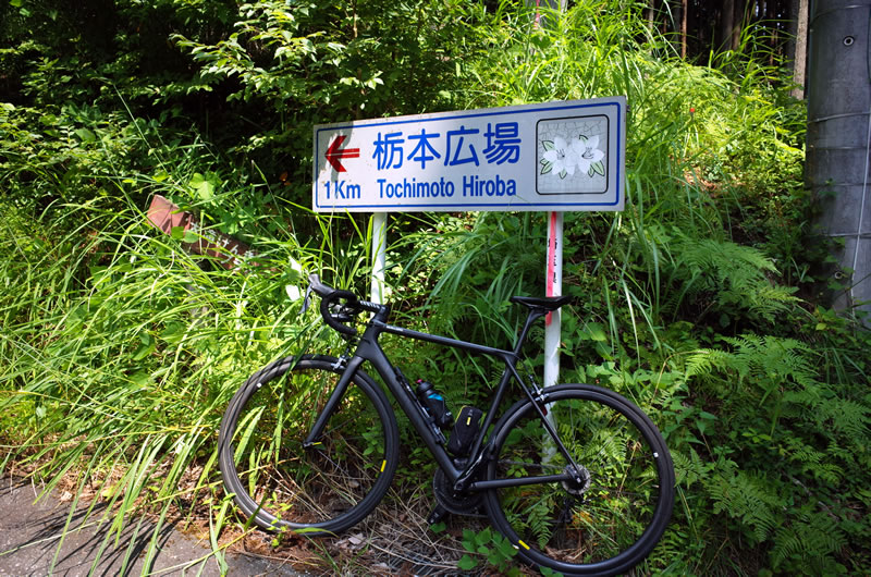 栃本広場の分岐。山の神峠は近い