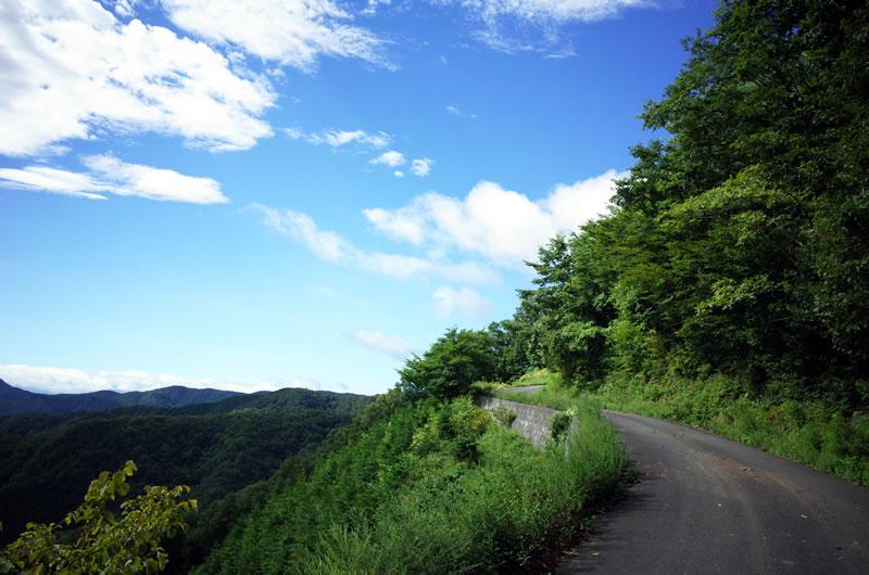 風張林道の見晴らしは今日も素晴らしい(*´ω`*)