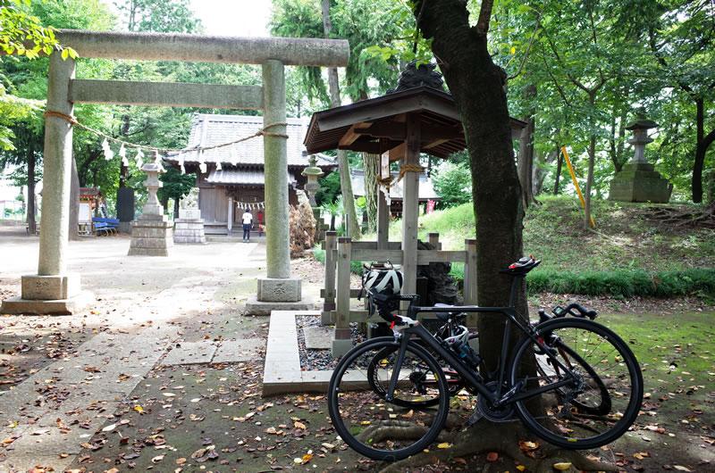 彼岸花で有名な仙波氷川神社
