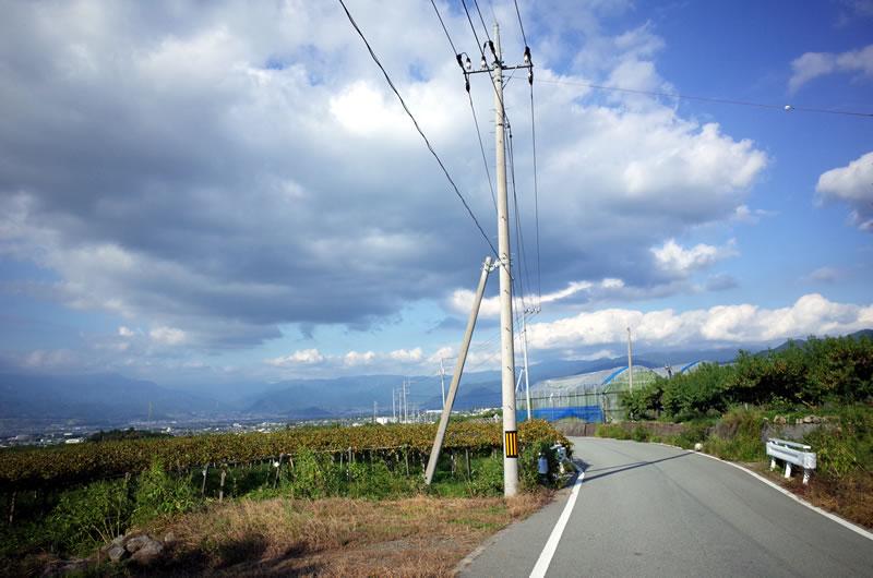 甲府盆地に一面に広がるブドウ畑!