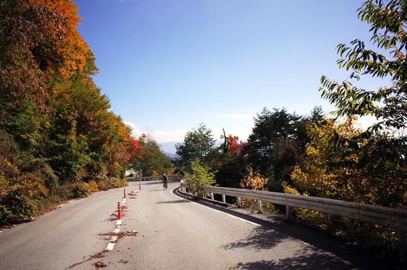 琴川ダムに近づくにつれて紅葉が・・・