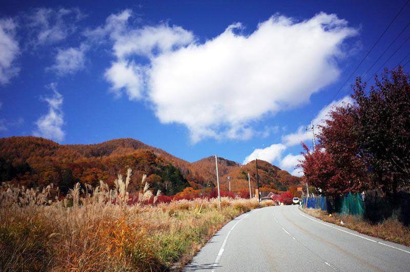 琴川ダムは紅葉真っ盛り!