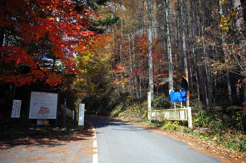 大弛峠の入り口は紅葉の世界への入り口