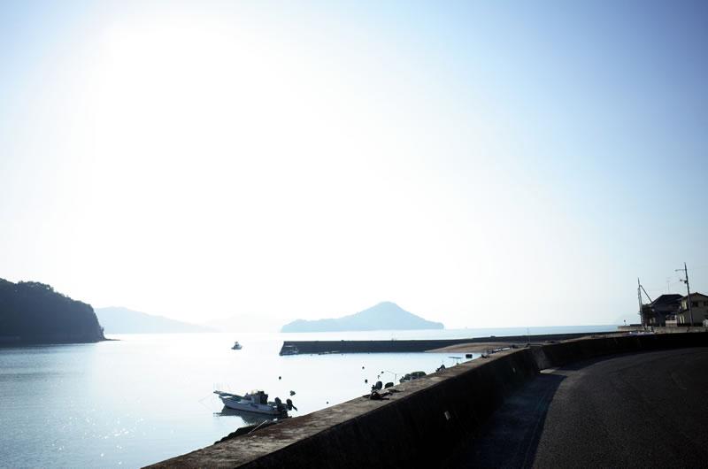 向島の東側は静かな海岸線の道