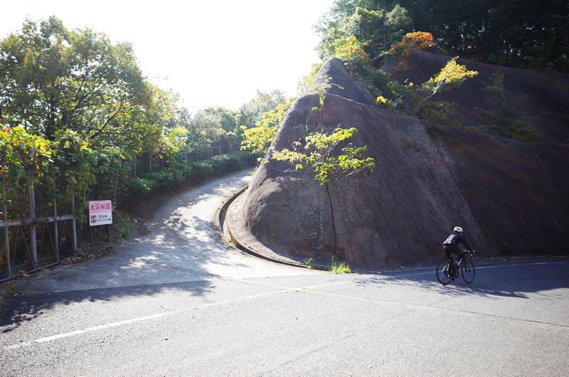 弓削島の桜の名所の入り口