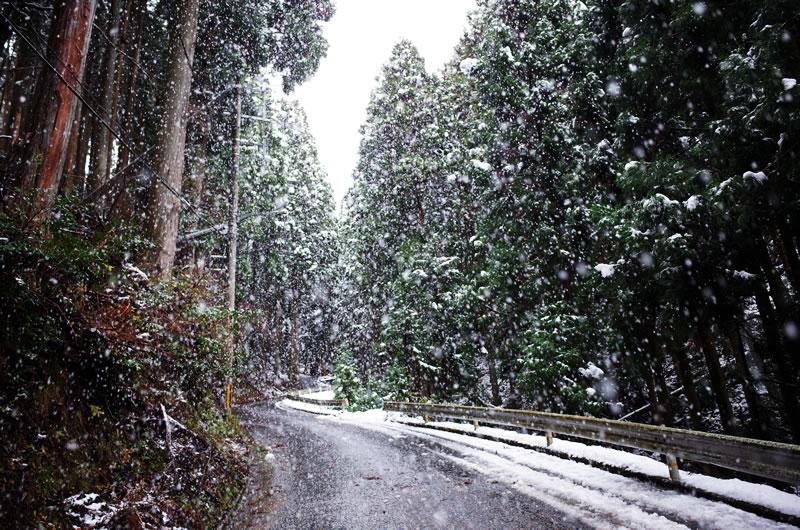 雪も激しくなってきたので百井峠は断念