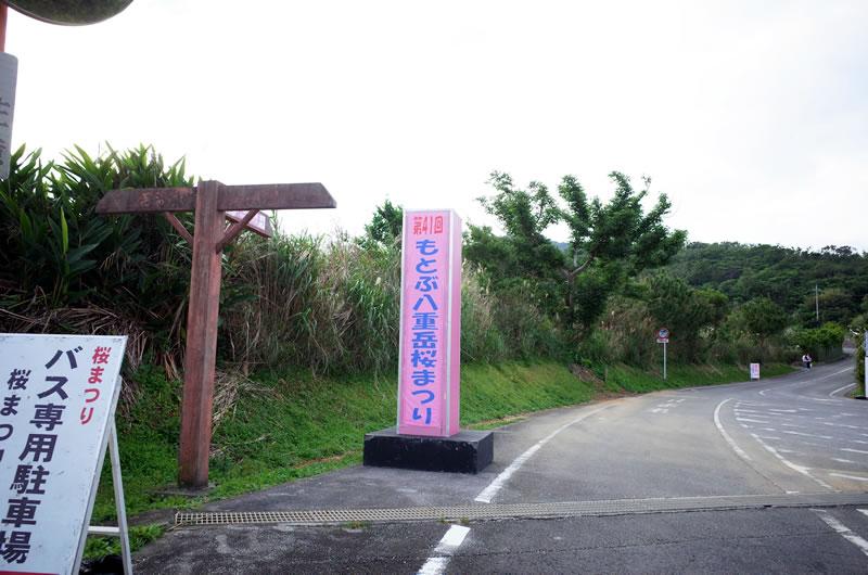 「第41回もとぶ八重岳桜まつり」の看板を発見!