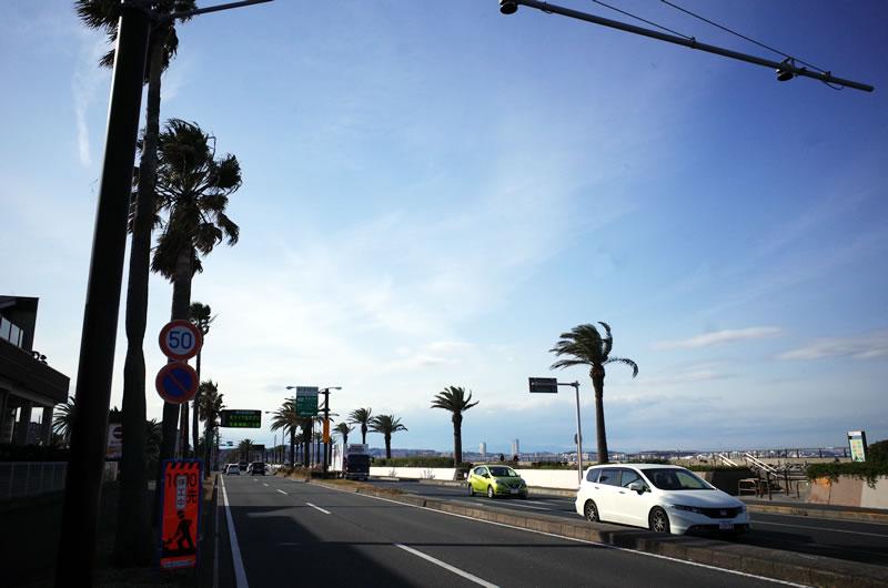 三浦半島に出るまでの信号峠がツラ過ぎた(;´Д`)