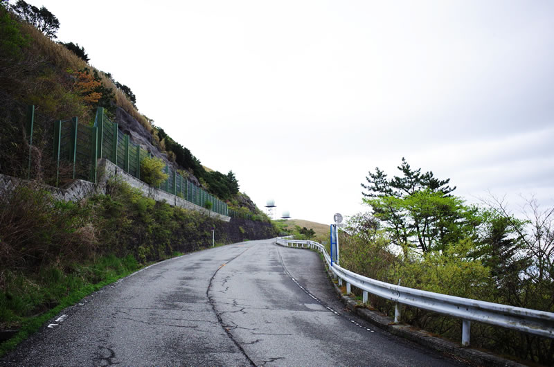 景色もよく走りやすい椿ライン