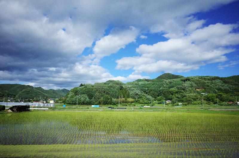 佐久穂の田園地帯をのんびりサイクリング(*´ω`)