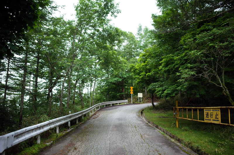 竹森林道に突入