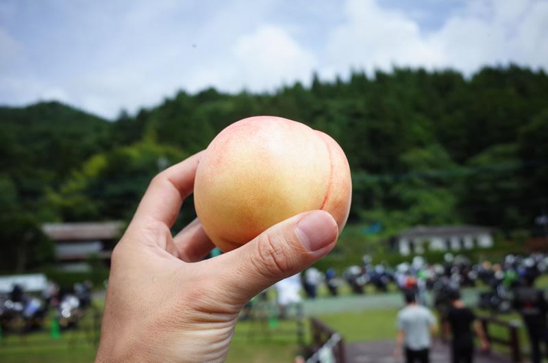 本物の桃も食べちゃう