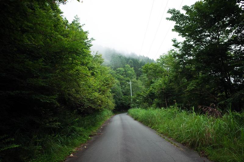 標高1,000mを超え、ひんやり涼しい天竜スーパー林道