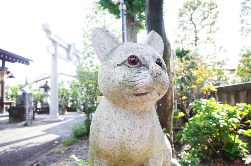 狛犬ならぬ狛猫がいる神社が立川にあるらしい