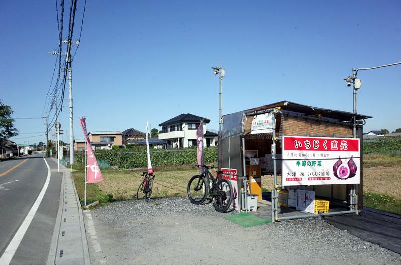 川島町に来たら、いちぢくの販売所も見逃せない!