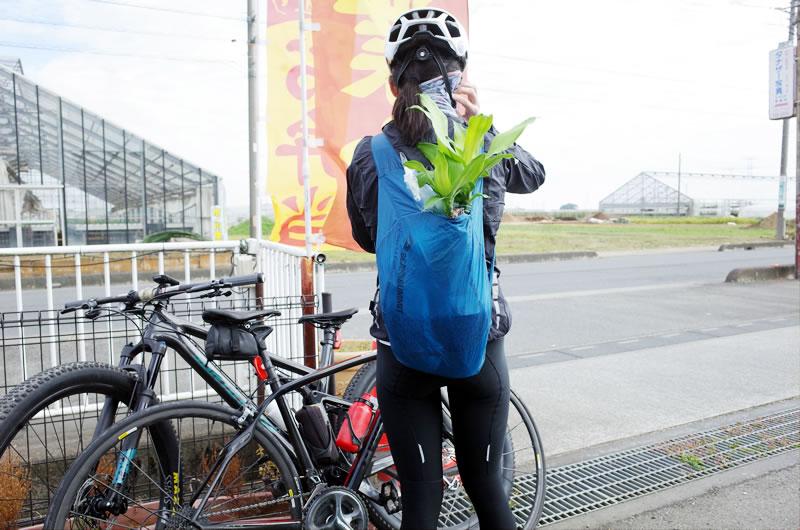 ウルトラシルナノデイパックなら、観葉植物も余裕で入る