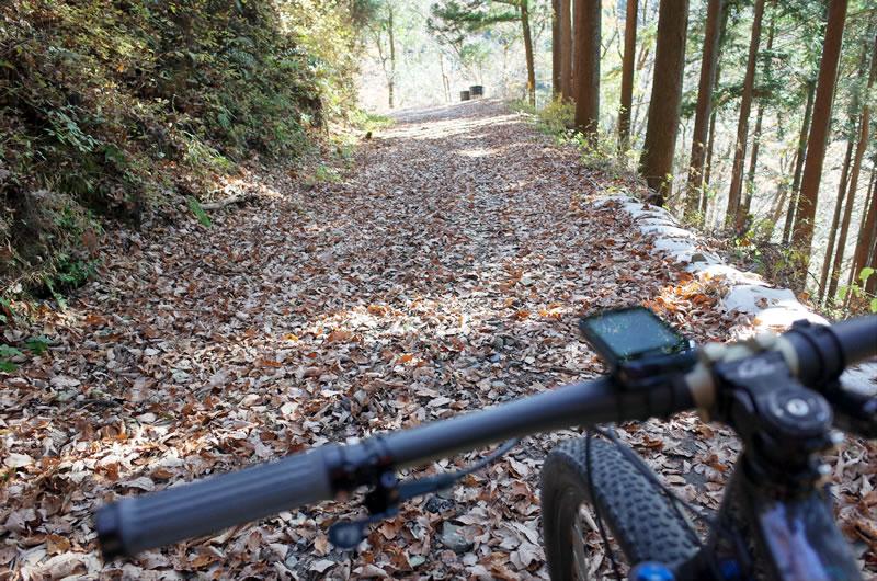 これくらいのグラベル林道ならフルサス・ロードで十分なはず