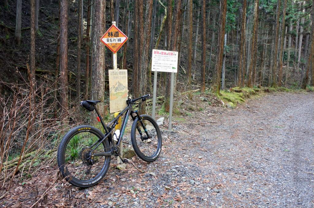 マウンテンバイクで林道真名井線を走ってみた!