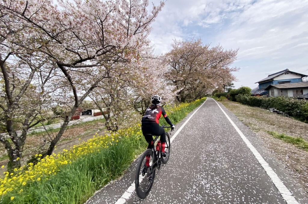 埼玉限定のファミレスを求めて荒川サイクリングロードを遡上