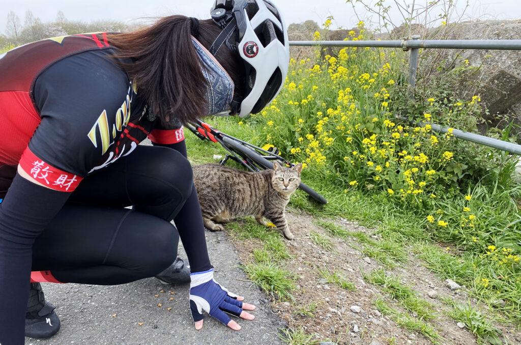 デゲメン氏と猫
