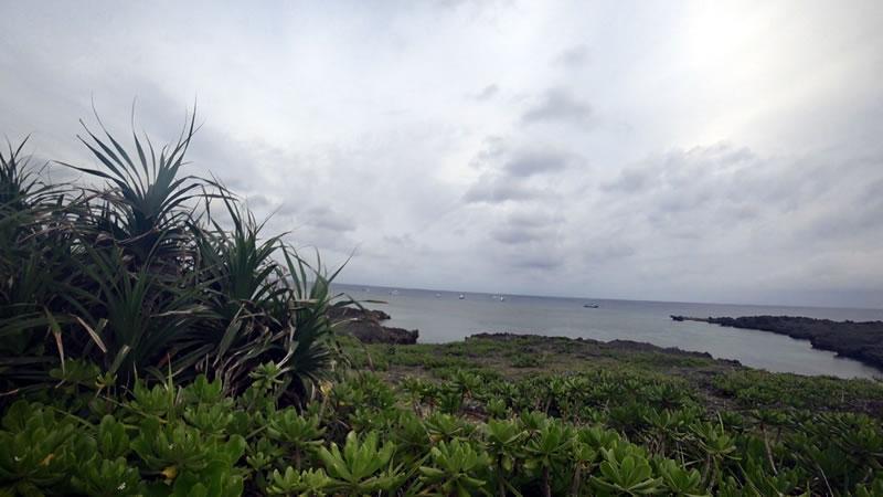 白鳥岬の先はダイビングスポット