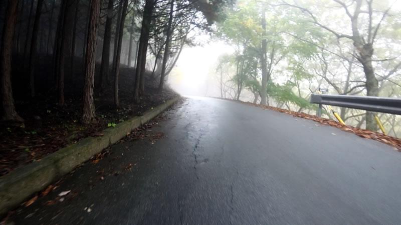 だんだん林道の良い雰囲気に^^