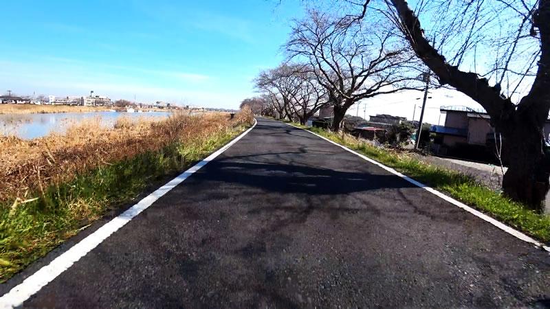 驚くほど道がきれいな霞ヶ浦湖岸道路