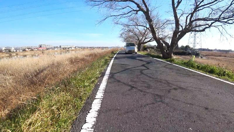 車も通る霞ヶ浦湖岸道路