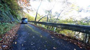 驚いたことに車が通る鋸山林道