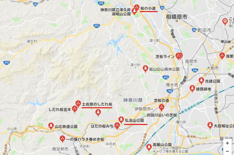 神奈川県西部にも桜のスポットがいっぱいあるみたいだぞぅ