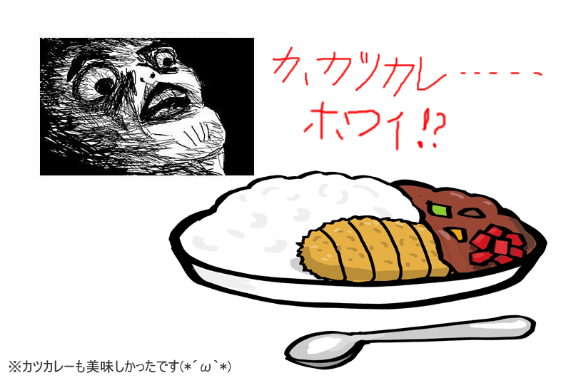 why katsu curry